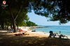 Rovinj Centener Cuvi View on the beach from the forest