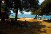 Rovinj Villas Rubin Resort beach Pine tree shadow