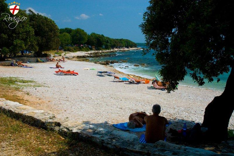 http://www.rovinj.co/site_media/media/beach/7/Rovinj-Beach-Polari-naturist-zone.jpg.800x600_q85.jpg