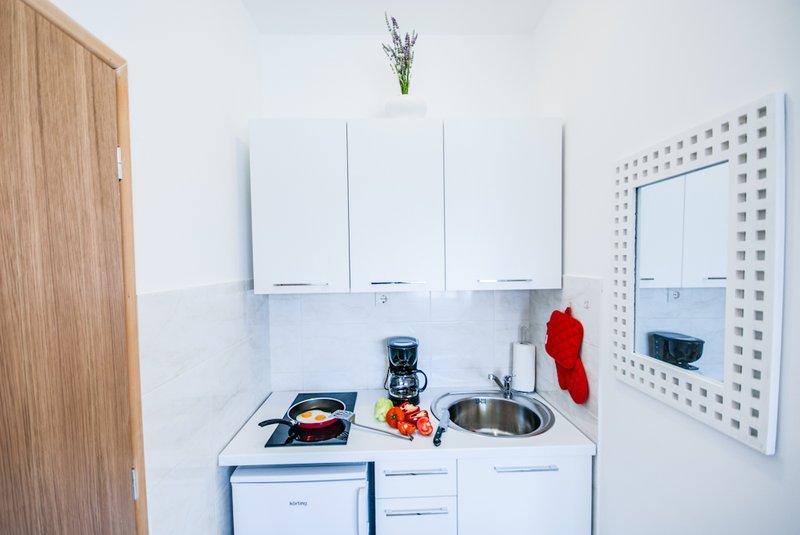 Apartments albino rovigno for Piani domestici accessibili ai disabili